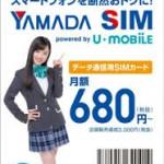 ヤマダSIMとEveryPhoneのレビュー